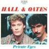 Daryl Hall And John Oates- Private Eyes (BodyAlive Remix)