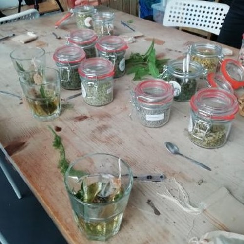 For The Love Of Herbs