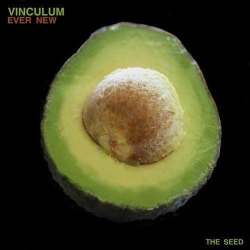 Vinculum- Well (Ross Mt. Park Remix)