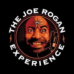 Joe Rogan Experience 1208 - Jordan Peterson