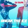 QHM274 - DJ Suri feat. Karina Kay - Break The Ice (DJ Suri & David Max Remix)
