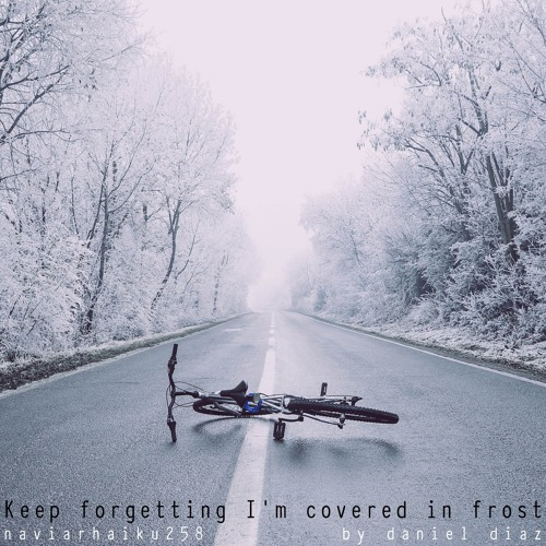 Keep Forgetting I'm Covered in Frost (naviarhaiku0258)