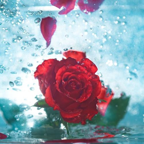 Otevírání studánek pro ženskou duši - 7 - O čisté lásce - 2018-12-12