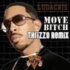 Ludacris - Move Bitch (Thrizzo Remix)