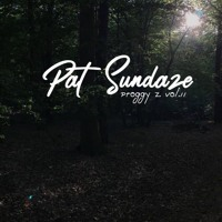 Pat Sundaze - Proggy Z. VOL II Artwork