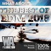 Download The Best Of EDM 2018 | 5 In 1 -95% Discounted Bundle (Limited Time Offer) Mp3