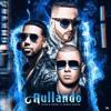Wisin & Yandel Ft. Romeo Santos - Aullando Portada del disco