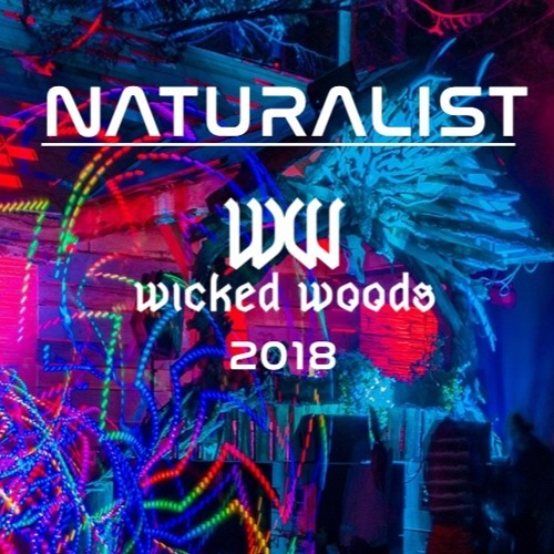 Live at The Hallow - Wicked Woods 2018