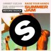 Ummet Ozcan vs. The Underdog Project - Summer Jam vs. Raise Your Hands (WeDamnz Mashup)