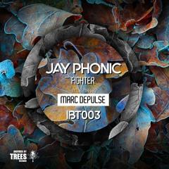 Jay Phonic - Fighter (Marc DePulse Remix)