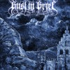 And Saw The Flock The Altar Of Anger - black metal