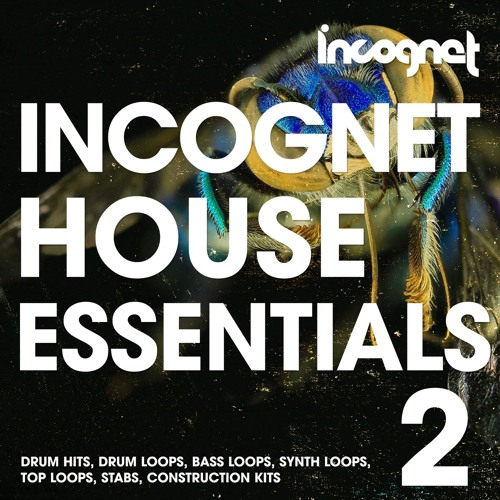 Incognet House Essentials Vol.2 Demo [+FREE DEMO SAMPLES]