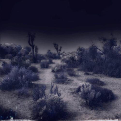 Dark summer (demo)