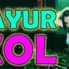 DJ SAYUR KOL   ORIGINAL REMIX VIRAL TERBARU 2019