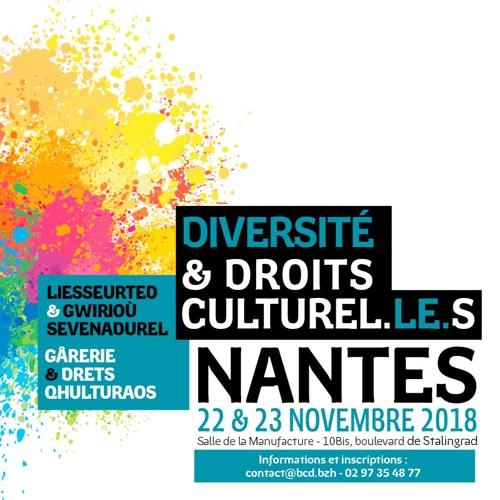 """Rencontres """"Diversité culturelle et droits culturels"""" – Nantes 2018"""