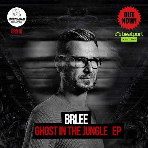 Brlee - Ghost (Original Mix)