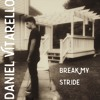 Matthew Wilder - Break My Stride (Cover by Daniel Vitarello)