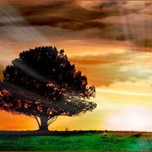 Meditatie - benieuwd naar loslaten