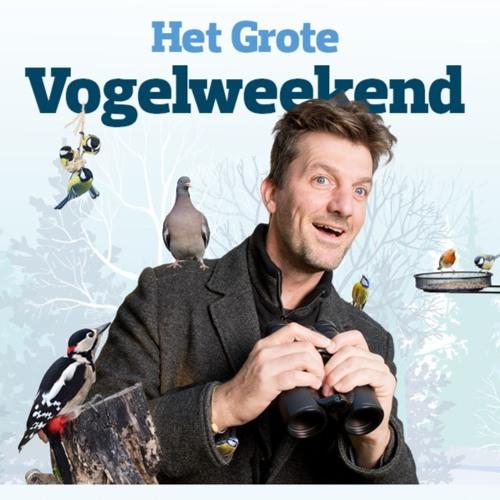 Fwiet! Fwiet! 13 Met Koen Leysen nav het Grote Vogelweekend