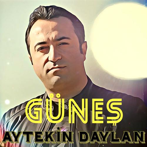 01-GUNES