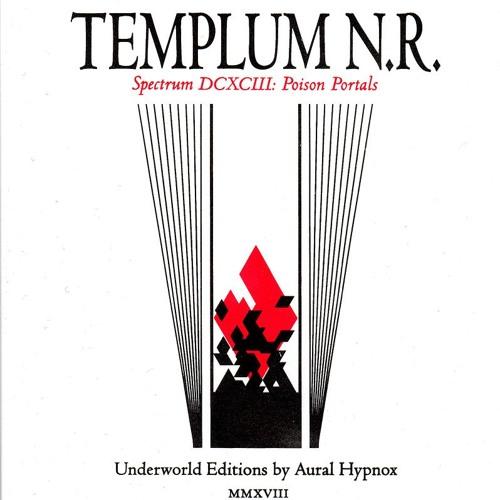 Templum N.R. - The Ashen Mirror