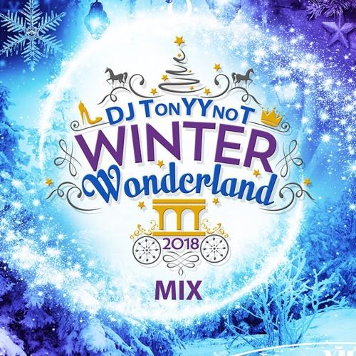 DjTonyYnot - Winter Wonderland Mix - 2019