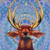 Download Samay Ka Pahiya - Psy/Goa Trance Live Mp3