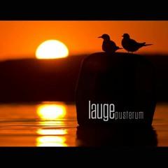 Lauge - For Altid Og Evigt