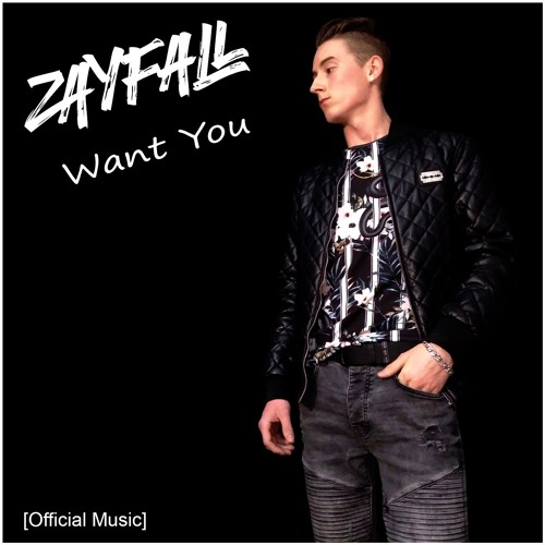 ZAYFALL - Want You