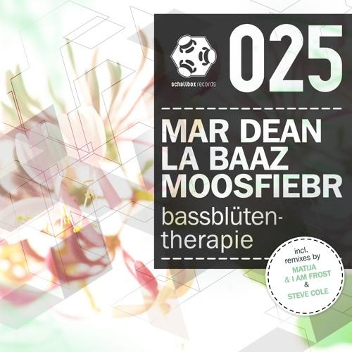 SBR025 // 4 // Mar Dean, La Baaz, Moosfiebr - Indaba (Steve Cole RMX)