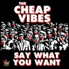 You're Gonna Miss Me - The Cheap Vibes  Copyright 2018 Not Aloud Records