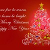 We want to wish you a very Merry Christmas and a Happy New Yaer!