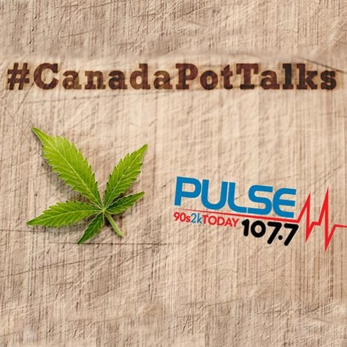 Canada Pot Talks with Steven Feldman [Dec 22, 2018]