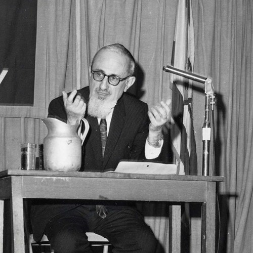 Jacob J. Schacter on Rabbi Joseph Soloveitchik and the State of Israel - Chapter 1