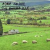 Adam Falcon - The Emerald Isle