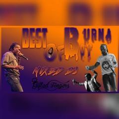 Official Best of Burna Boy Mix