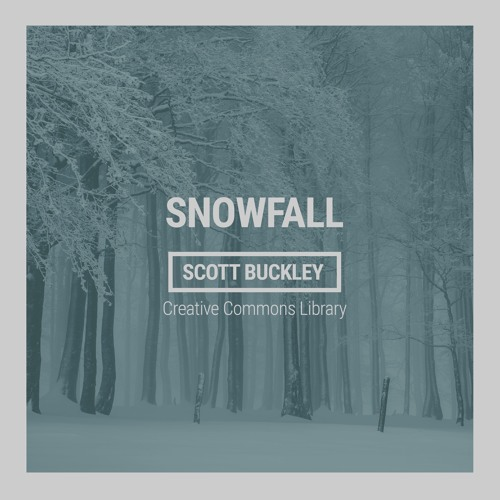 Snowfall (CC-BY)