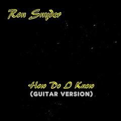 Ron Snyder - How Do I Know (guitar version)