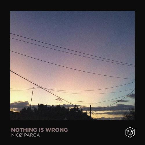Nicø Parga - Nothing Is Wrong.