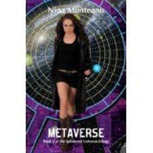 Metaverse Excerpt, Part III of the Splintered Universe Trilogy
