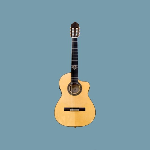 FREE] Acoustic Guitar Type Beat -