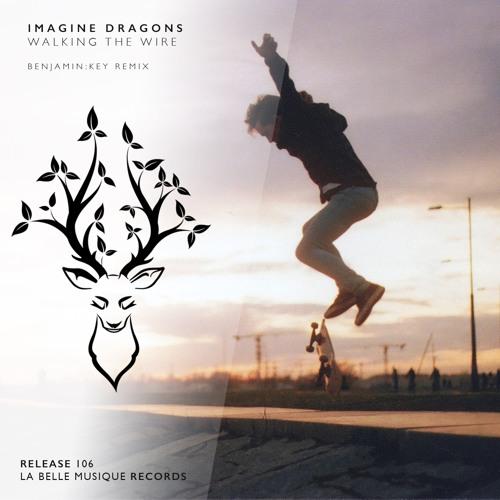 Imagine Dragons - Walking The Wire (BENJAMIN:KEY Remix)