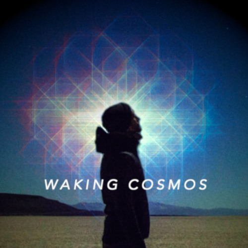 The Qualia of Infinity | Mike Johnson | The Waking Cosmos Podcast