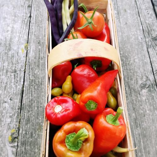 Folge 10: So nah und doch so fern - biologische vs. regionale Lebensmittel