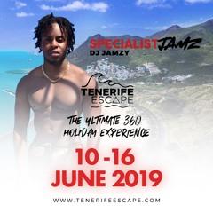 #TenerifeEscape | Bashment Promo Mix | DJ Jamzy @SpecialistJamz | @TenerifeEscape