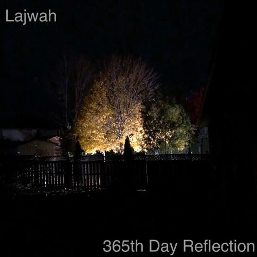 Lajwah - 365th Day Reflection [January 2019]