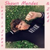Shawn Mendes And Zedd Lost In Japan Remix Cover Mp3
