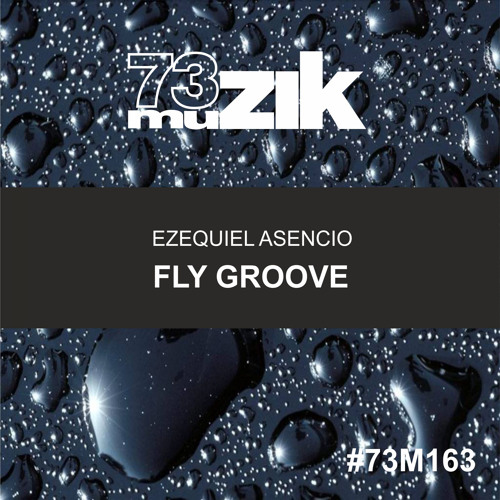 73M163 : Ezequiel Asencio - Fly Groove (Original Mix)
