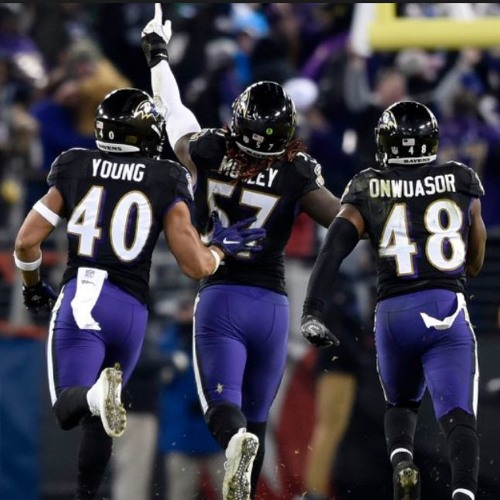 ARMCHAIR QUARTERBACK: Ravens Are in The Playoffs