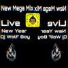 Mega Mix Live New Year 2019 Dj WolF Boy